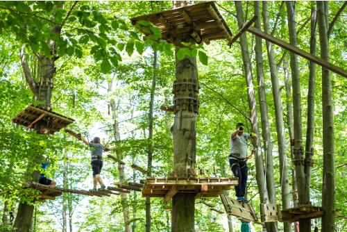 brasov parc aventura2